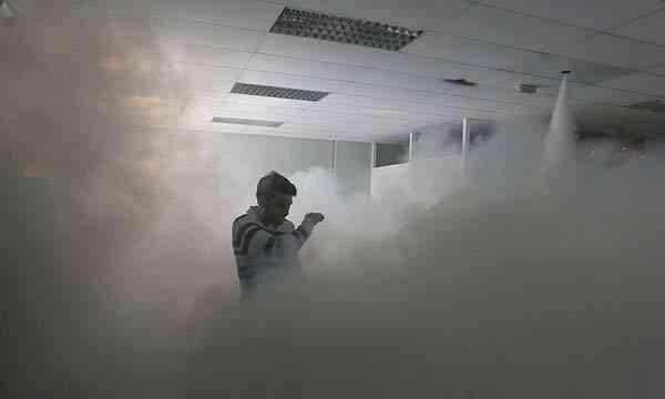 Ladrones en la niebla